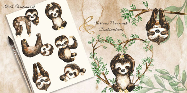 hand painted baby sloth png