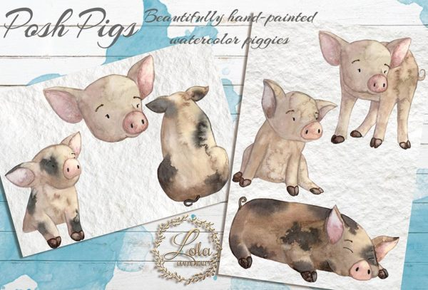 hand painted pigs png