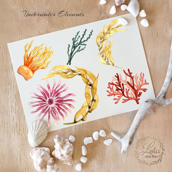hand painted watercolor coral