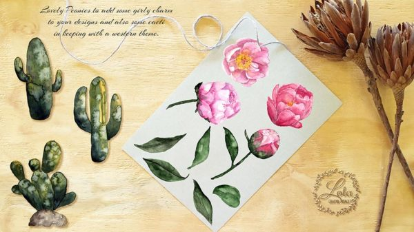 hand painted peonies png