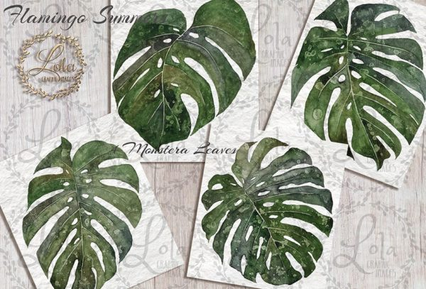 hand painted monstera leaves