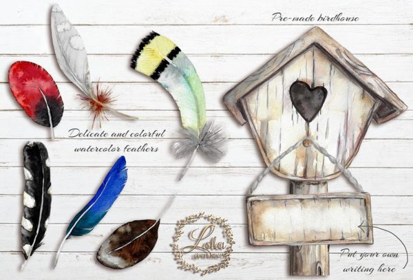 hand painted feather png