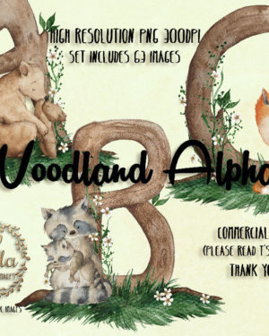 Baby Woodland Animals - Watercolor PNG Images